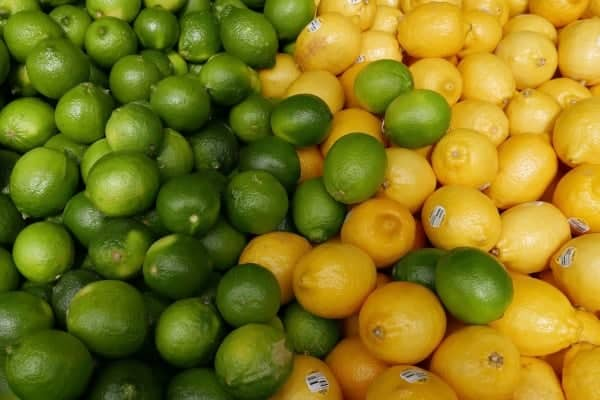 Are limes and lemons okay for dogs to eat