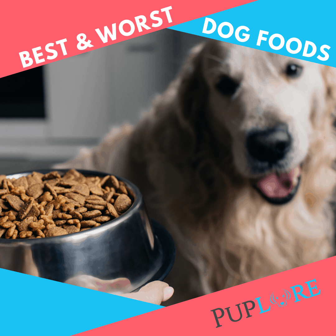 16 Worst Dog Food Brands To Avoid In 2020 16 Top Choices
