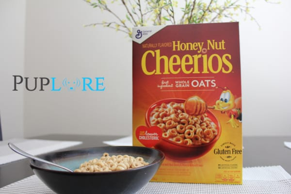 Can Dogs Eat Honey Nut Cheerios?