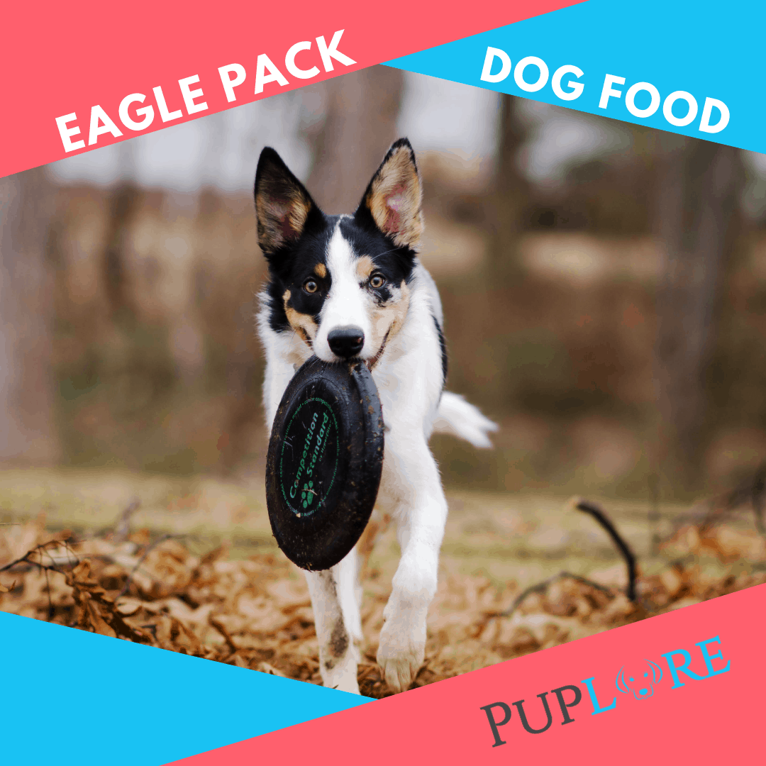 Eagle Pack Dog Food Review - Puplore