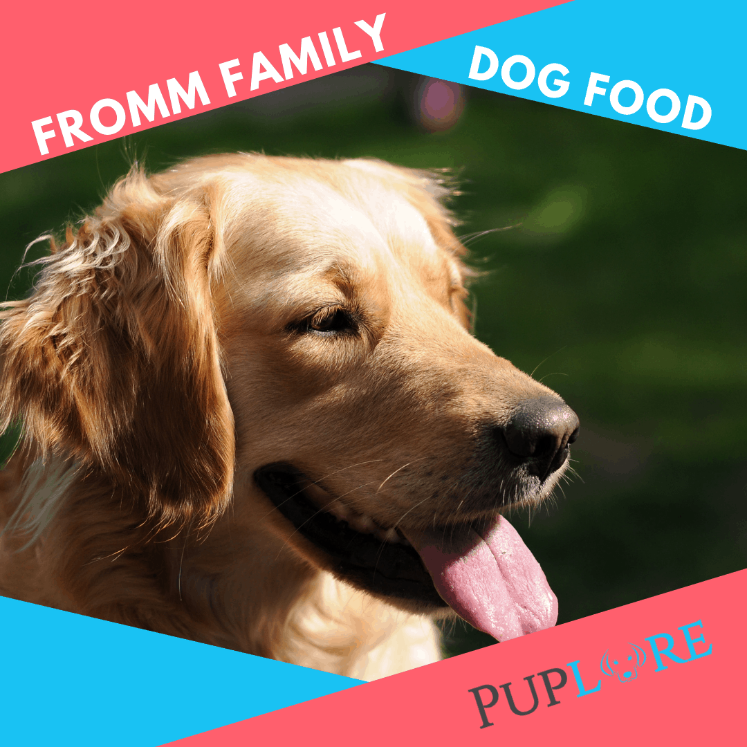 Fromm Dog Food Review - Puplore